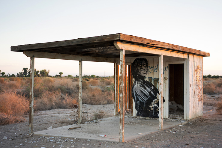 brooklyn-street-art-eddie-colla-salton-sea-09-14-web-9