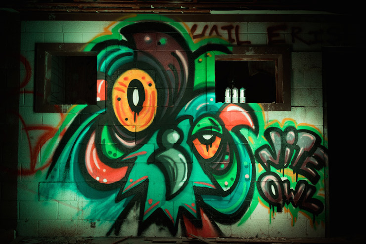 brooklyn-street-art-nite-owl-2wenty-salton-sea-09-14-web-1