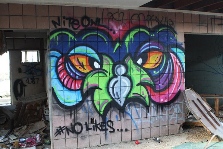 brooklyn-street-art-nite-owl-salton-sea-09-14-web-1