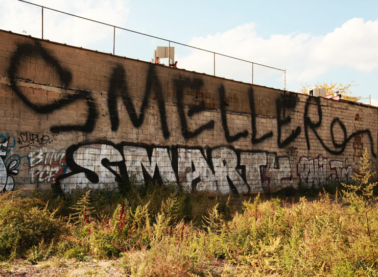 brooklyn-street-art-smells-smart-jaime-rojo-10-19-14-web