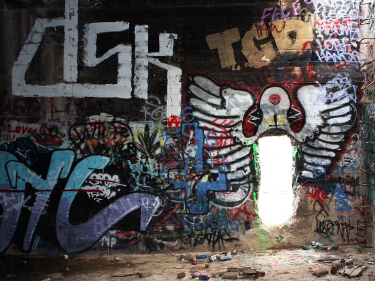 brooklyn-street-art-clairvoyance-meryl-burke-american-Flats-reno-2014-web-1