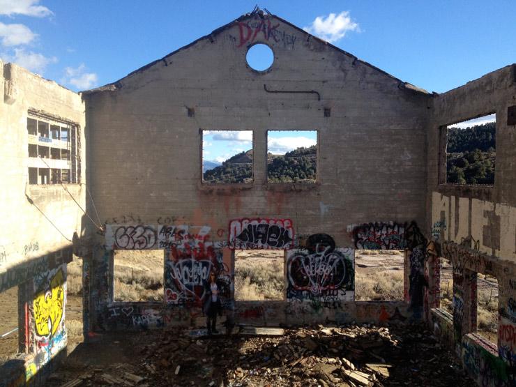 brooklyn-street-art-erik-burke-american-Flats-reno-2014-web-2