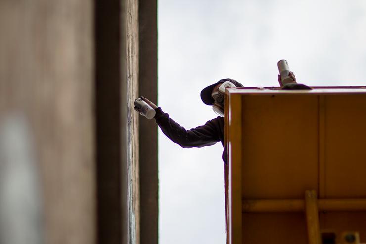 brooklyn-street-art-roa-lorenzo-gallitto-blind-eye-factory-11-14-web-3