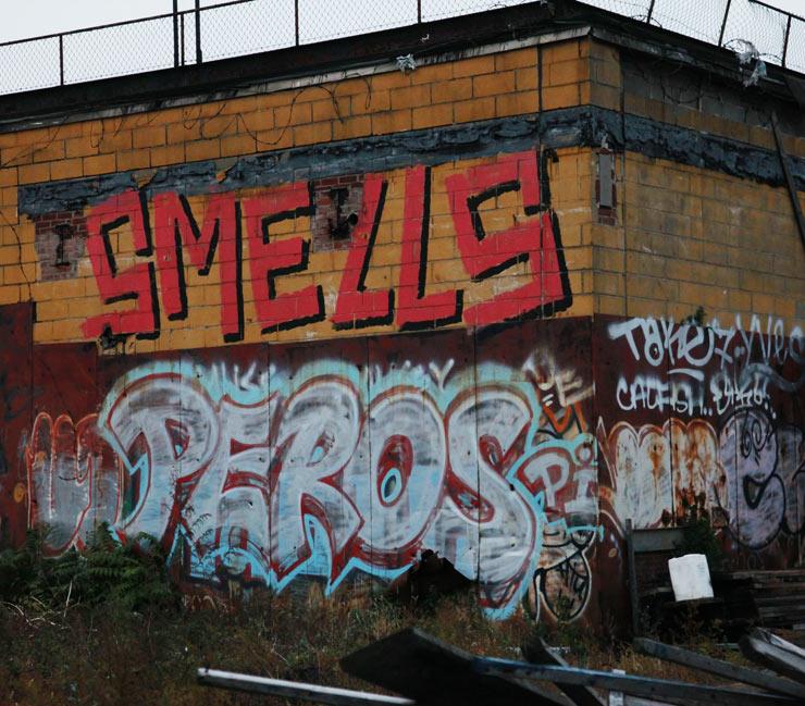 brooklyn-street-art-smells-peros-jaime-rojo-11-30-14-web