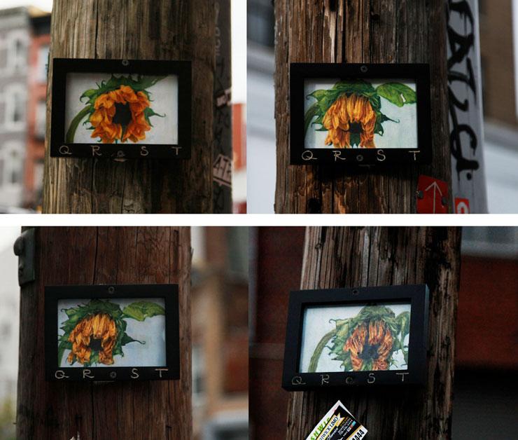 Brooklyn-Street-Art-QRST-4-Sunflowers-Dec2014-740