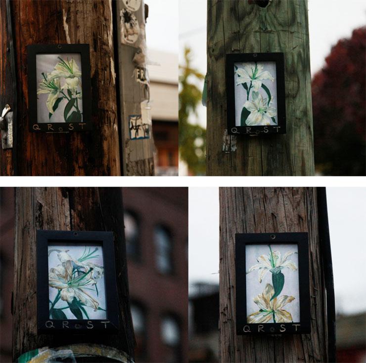 Brooklyn-Street-Art-QRST-4-lilies-Dec2014-740
