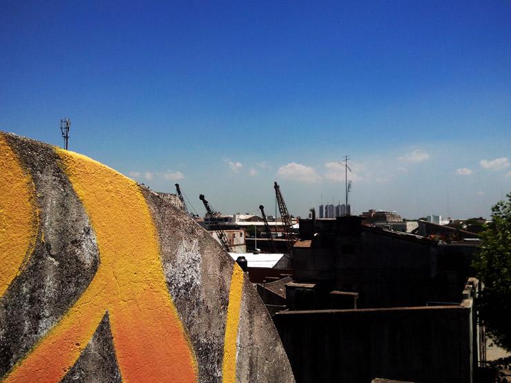 brooklyn-street-art-gualicho-isla-maciel-argentina-11-14-web-3