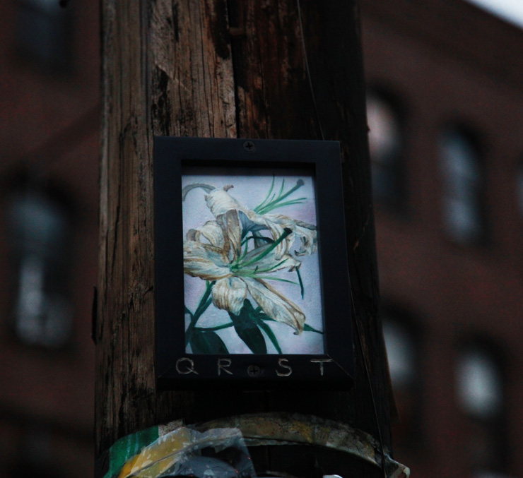 brooklyn-street-art-qrst-jaime-rojo-11-14-2-web-2b