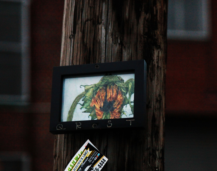 brooklyn-street-art-qrst-jaime-rojo-11-14-3-web-4c