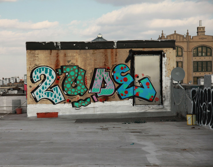 brooklyn-street-art-2tude-jaime-rojo-01-25-15-web