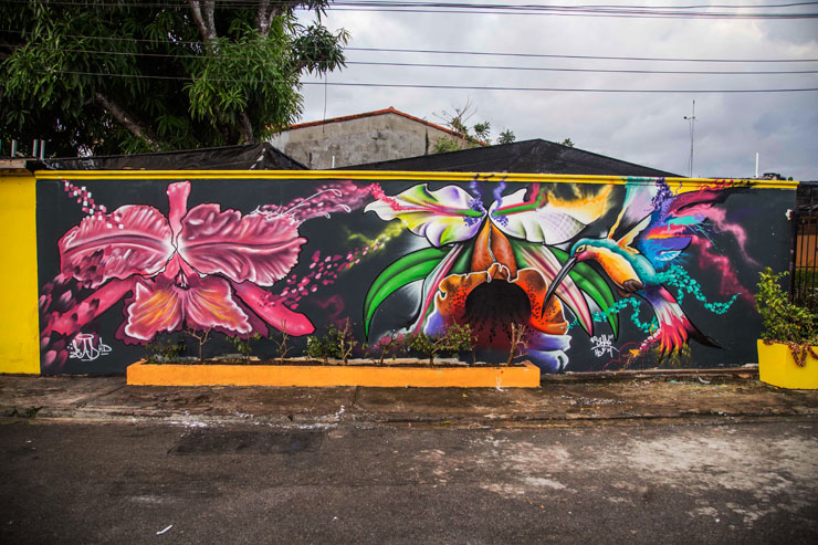 brooklyn-street-art-BAD6-SHAK-artesano-project-tost-films-mario-ramirez-Rio-San_Juan-Dominican-Republic-12-2014-web