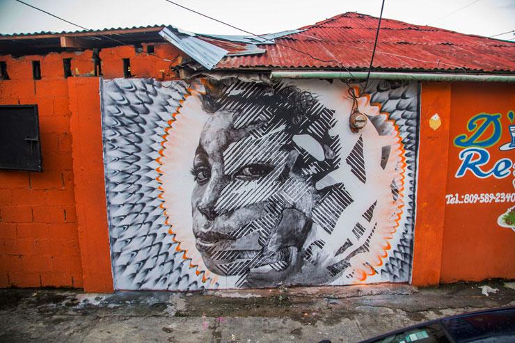 brooklyn-street-art-Fili-2alas-hox-artesano-project-tost-films-mario-ramirez-Rio-San_Juan-Dominican-Republic-12-2014-web