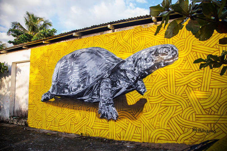 brooklyn-street-art-bikismo-artesano-project-tost-films-mario-ramirez-Rio-San_Juan-Dominican-Republic-12-2014-web