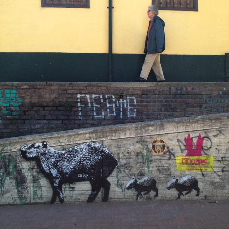 brooklyn-street-art-crisp-yoav-litvin-bogota-colombia-01-15-web-1