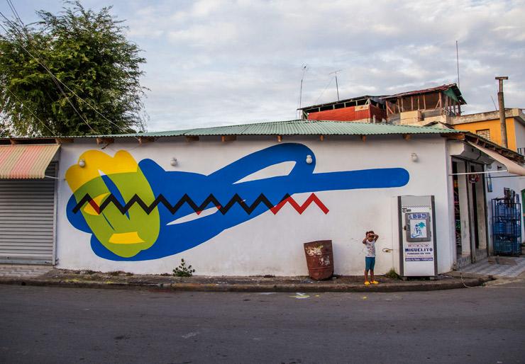 brooklyn-street-art-elian-artesano-project-tost-films-mario-ramirez-Rio-San_Juan-Dominican-Republic-12-2014-web