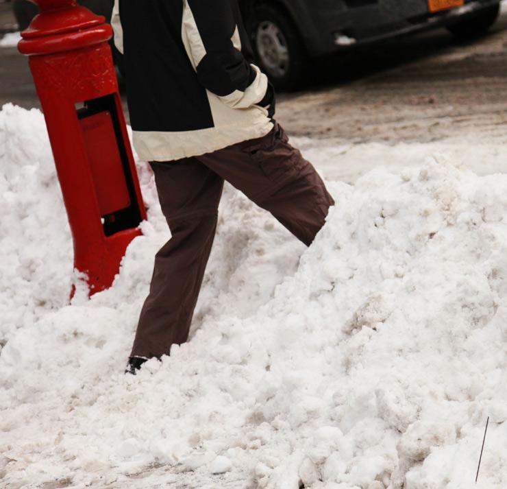 brooklyn-street-art-jaime-rojo-juno-snowstorm-01-15-web-6