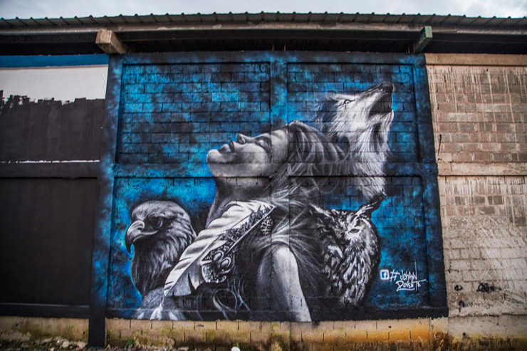 brooklyn-street-art-johann-artesano-project-tost-films-mario-ramirez-Rio-San_Juan-Dominican-Republic-12-2014-web