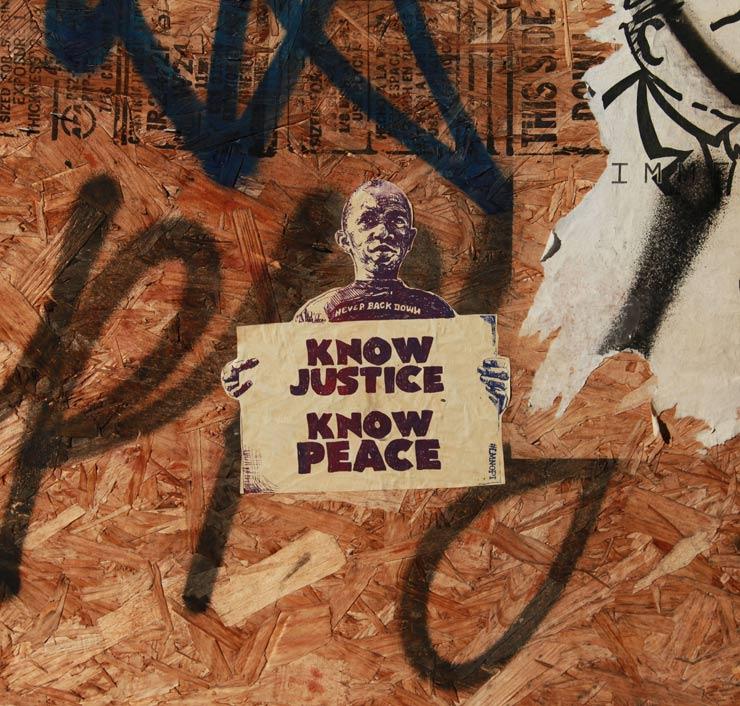 brooklyn-street-art-lmnopi-jaime-rojo-01-25-15-web