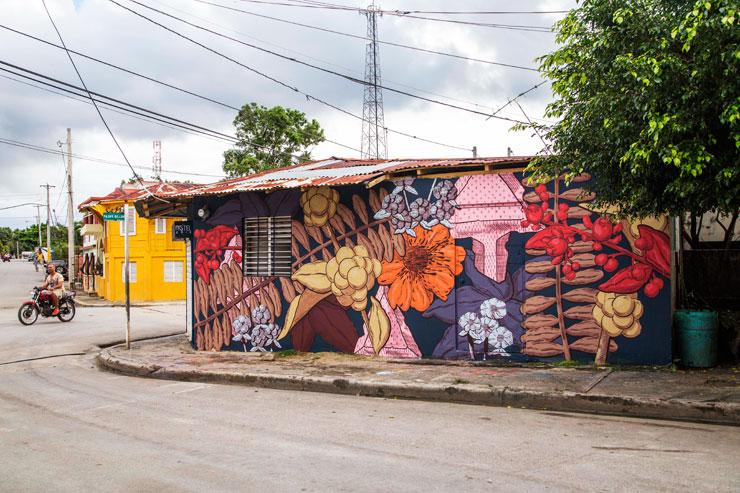 brooklyn-street-art-pastel-artesano-project-tost-films-mario-ramirez-Rio-San_Juan-Dominican-Republic-12-2014-web