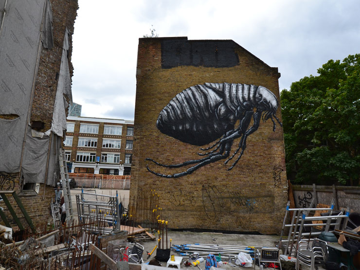 brooklyn-street-art-ROA-LONDON-2014-web-2