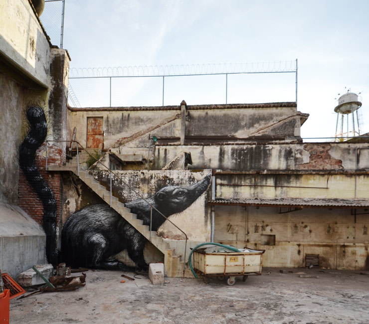 brooklyn-street-art-ROA-QUERETARO-2015-web-5