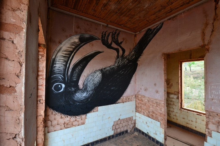 brooklyn-street-art-ROA-brazil-2015-web-6