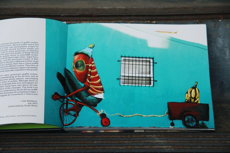 brooklyn-street-art-graffiti-south-africa-cale-waddacor-02-15-web-2