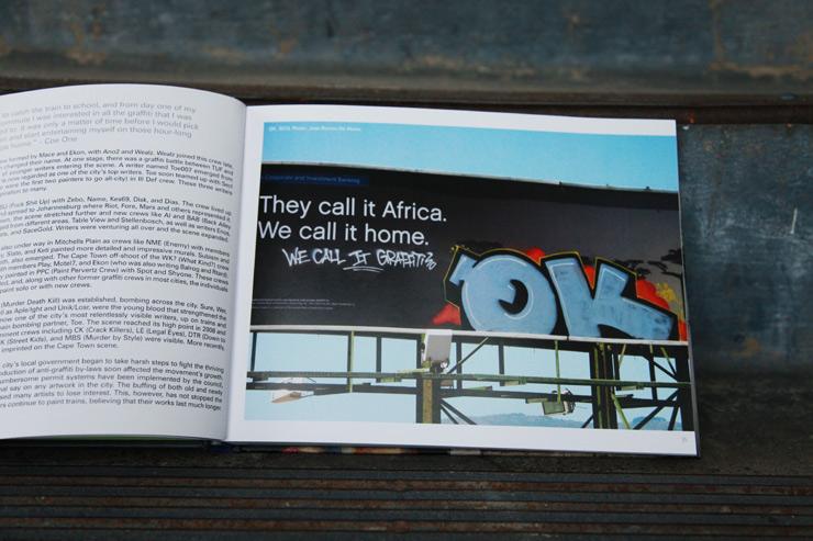 brooklyn-street-art-graffiti-south-africa-cale-waddacor-02-15-web-3