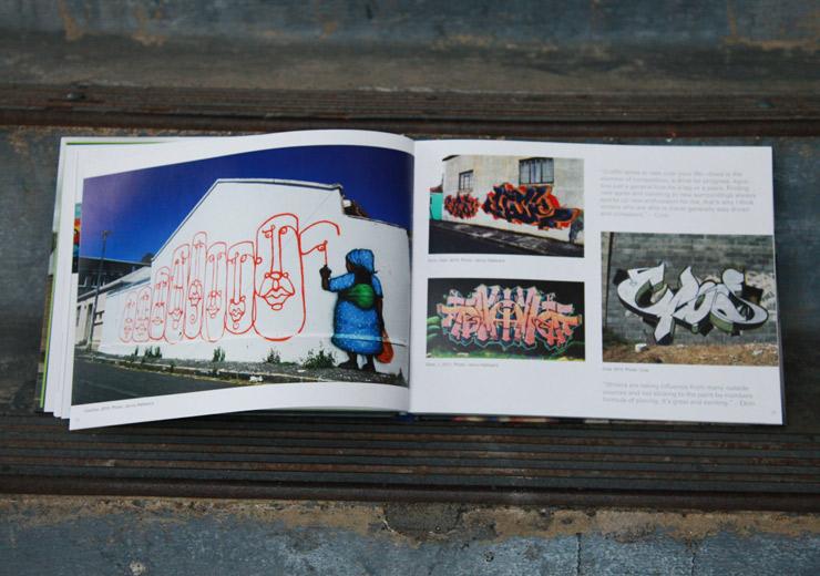 brooklyn-street-art-graffiti-south-africa-cale-waddacor-02-15-web-4