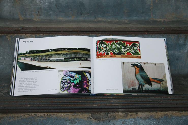 brooklyn-street-art-graffiti-south-africa-cale-waddacor-02-15-web-6
