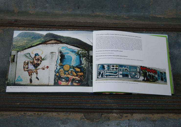 brooklyn-street-art-graffiti-south-africa-cale-waddacor-02-15-web-8