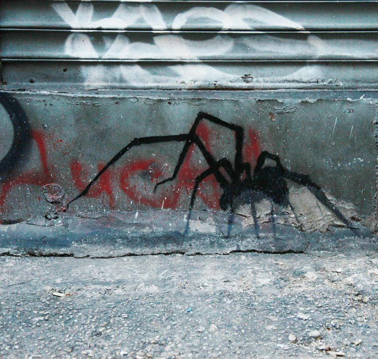 brooklyn-street-art-paul-insect-jaime-rojo-02-15-15-web