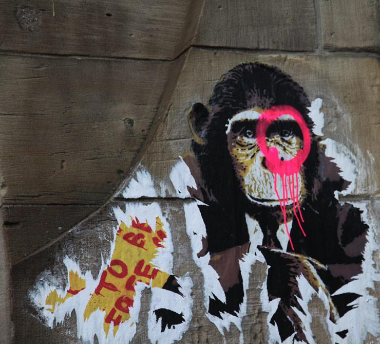 brooklyn-street-art-dain-alessioB-berlin-jaime-rojo-03-15-web