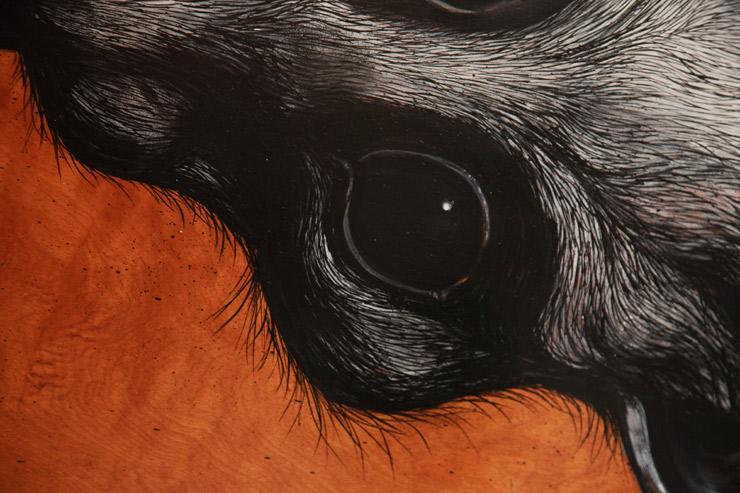 brooklyn-street-art-roa-JLVGallery-jaime-rojo-04-15-web-14