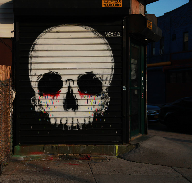 brooklyn-street-art-vexta-jaime-rojo-05-15-web