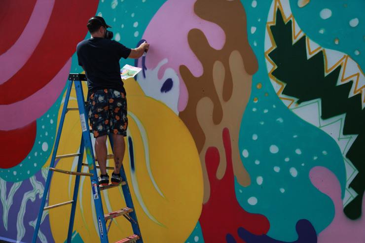 brooklyn-street-art-avaf-rage-johnson-jaime-rojo-coney-art-walls-06-15-web
