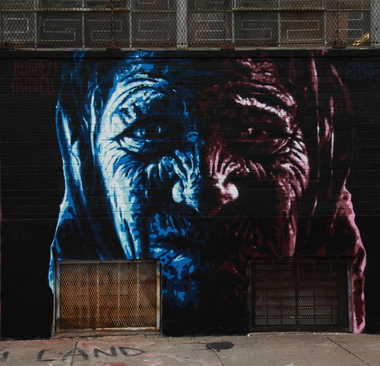 brooklyn-street-art-damien-mitchell-jaime-rojo-welling-court-2015-web