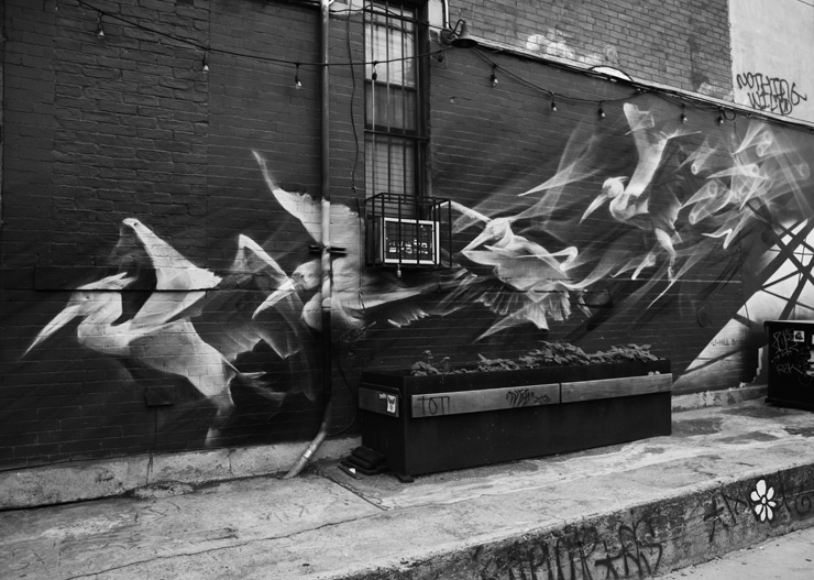brooklyn-street-art-li-hill-jaime-rojo-06-21-15-web-2