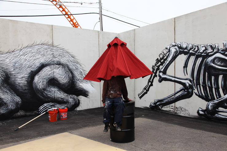 brooklyn-street-art-roa-jaime-rojo-coney-art-walls-06-15-web-3