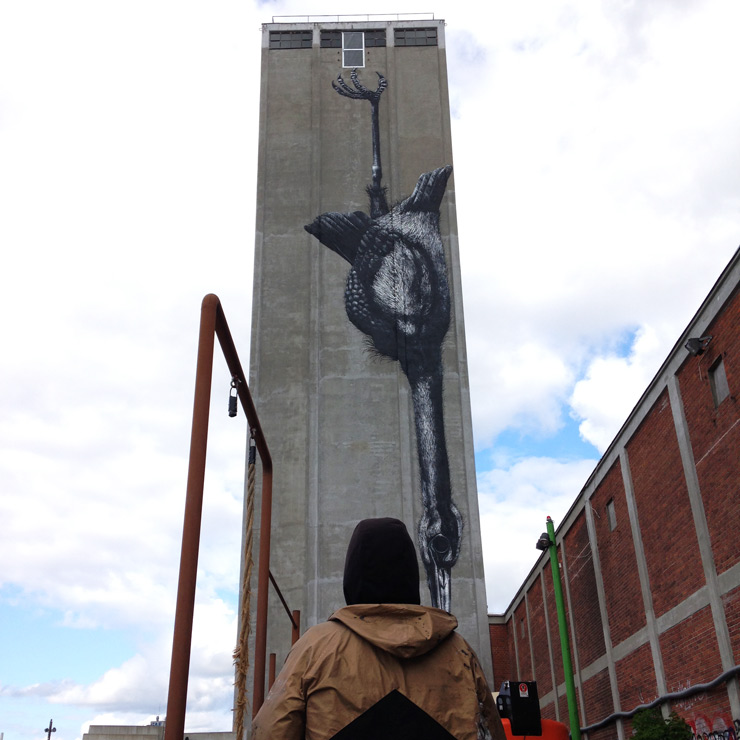 brooklyn-street-art-roa-nicolai-frank-odense-denmark-06-15-web-1