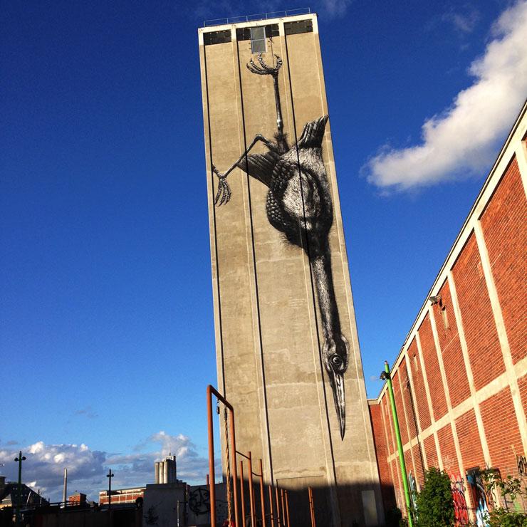 brooklyn-street-art-roa-nicolai-frank-odense-denmark-06-15-web-9