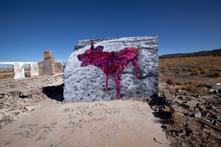 brooklyn-street-art-jetsonorama-lola-navajo-nation-cow-springs-07-15-web-5