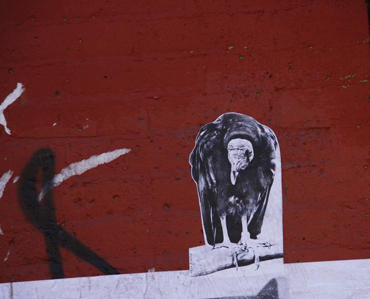 brooklyn-street-art-blanca-blanca-jaime-rojo-08-15-web