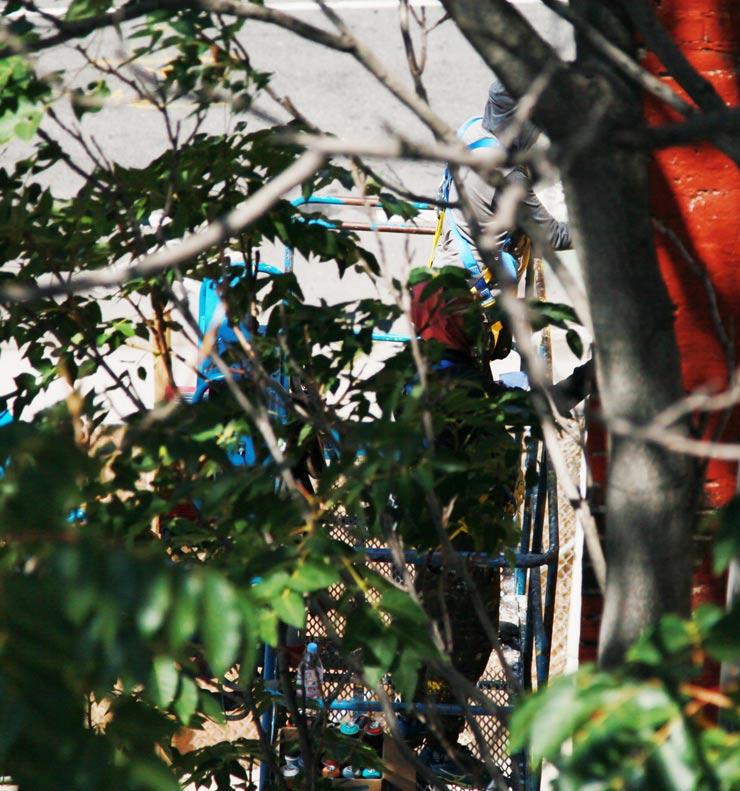 brooklyn-street-art-os-gemeos-jaime-rojo-08-15-web-6