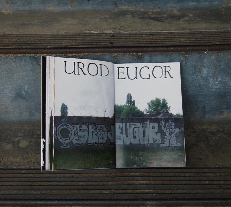 brooklyn-street-art-street-art-irga-irga-crew-knarf-jaime-rojo-08-15-web-3
