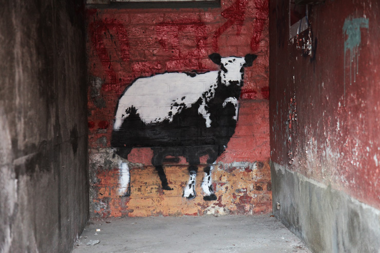 brooklyn-street-art-blek-le-rat-jaime-rojo-nuart-stavanger-norway-09-15-web