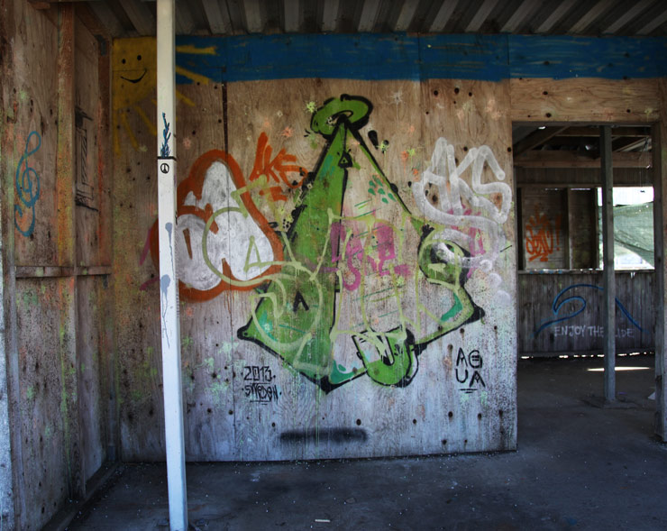 brooklyn-street-art-agua-jaime-rojo-boras-sweden-09-15-web