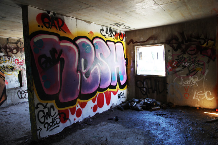 brooklyn-street-art-nesh-jaime-rojo-boras-sweden-09-15-web