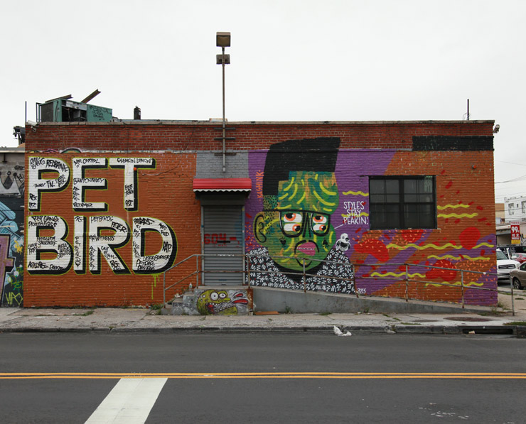 brooklyn-street-art-pet-bird-peter-carroll-cash4-darkclouds-kashink-jaime-rojo-09-30-web
