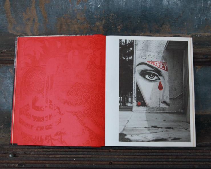 brooklyn-street-art-shepard-fairey-covert-to-overt-jaime-rojo-11-15-web-10
